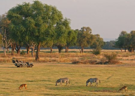 Adventure Travel - South Luangwa National Park in Zambia is Best to See the Luangwa River