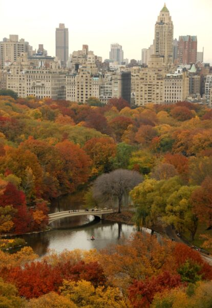 Sightseeing NYC - Central Park Includes About 50 Fountains And Monuments