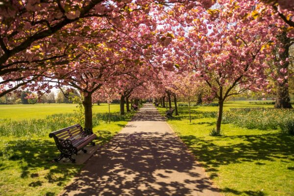 London Sightseeing Guide - Hyde Park is One of The Largest Parks in The City