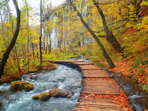 Most Beautiful National Parks in Europe - Plitvice Lakes National Park is Where You Can Enjoy Hiking And Swimming