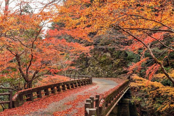 7 Most Stunning Places in Japan - Shikoku Island Has Many Holy Temples