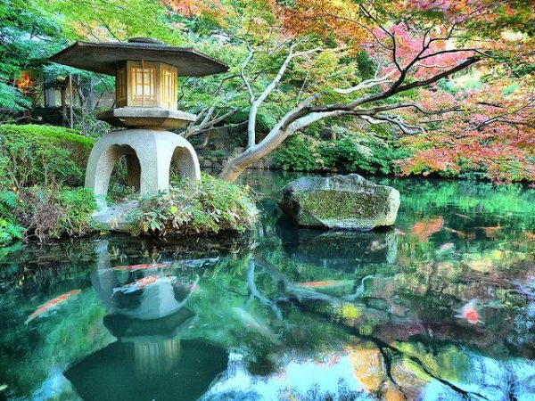 Tokyo's Most Beautiful Gardens