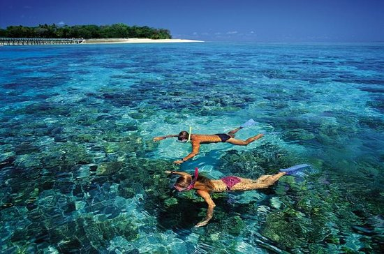 Top Locations for Snorkeling in Australia