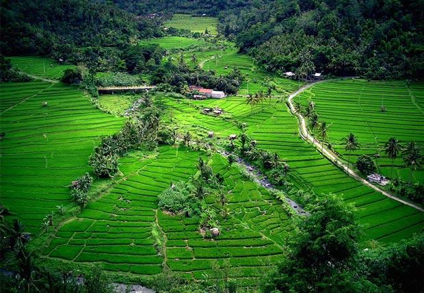The most beautiful beaches of Indonesia, Bali Island