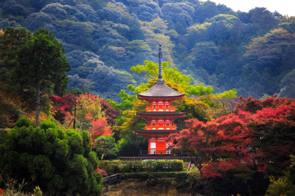 Asia Travel Guide - Kyoto Was Capital of The Japanese Empire 1000 Years Ago