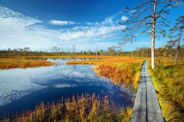 Estonian sights, National Park - lahemaa_national_park