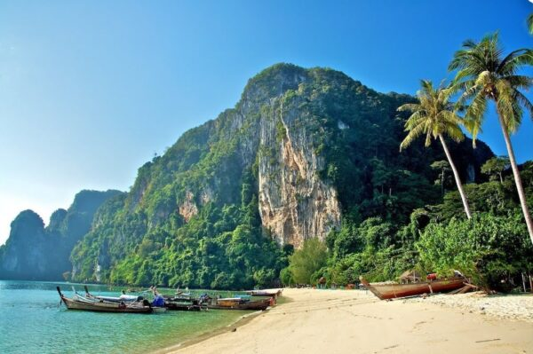 Tonsai Bay is the main entrance and exit center of Ko Phi Phi
