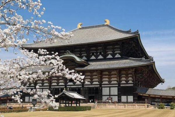 Tōdai-ji Temple is Surrounded by Beautiful Gardens And Wildlife - Japan's Most Spectacular Tourist Destinations