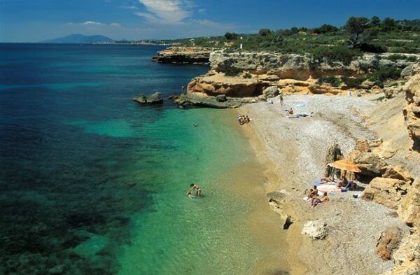 The Best Places in Ibiza to Visit - Cala Llenya A Place With Lush Pine Trees