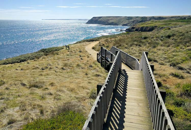 Best of Australian Islands to Visit - Phillip Island Good For Hiking, Cycling & Fishing
