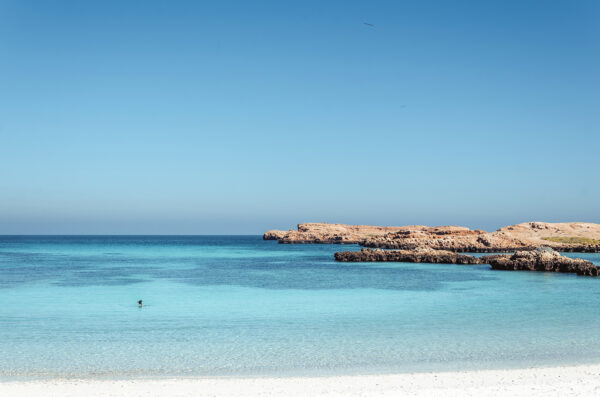 What to Do in Oman - Ad Dimaniyat Islands One of Best Diving Areas in Oman