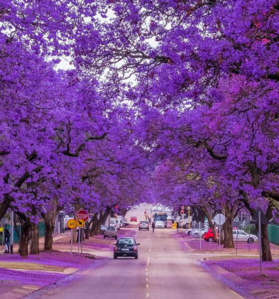 Best Shopping Malls in Pretoria