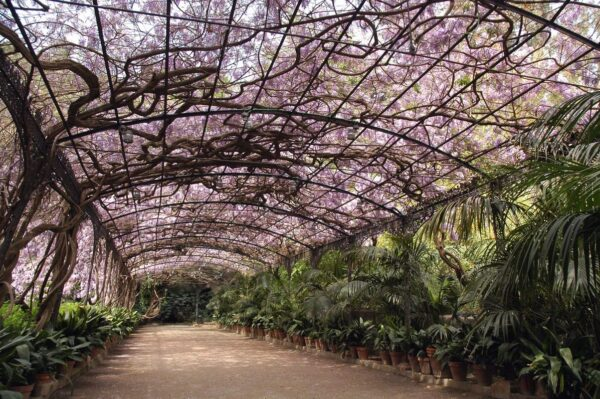 What to Do in Spain - Botanical Gardens Has Mediterranean, Tropical & Subtropical Plants