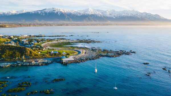Oceana Attractions - Kaikoura A good Place For Seafood & Wildlife Enthusiasts