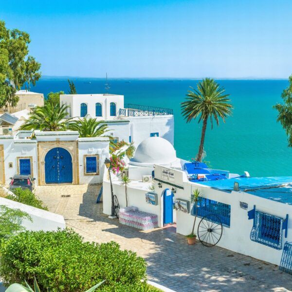 What to Do in Tunisia - Sidi Bou Said A Beautiful Location With Blue And White Houses