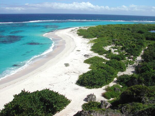 Island Buck List - Barbuda A Beautiful Place With its Own Wild Life And Vegetation