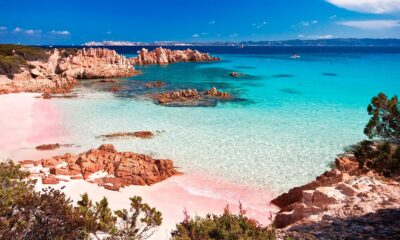 Most Spectacular Pink Beaches in The World