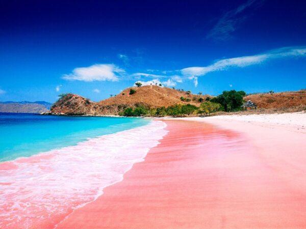 Most Spectacular Pink Beaches in The World - Pink Beach (Pantai Merah) Known As Dragon Beach
