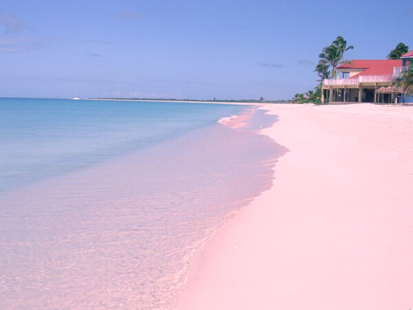 Most Spectacular Pink Beaches in The World - Pink Sands Beach With Miniature Shape Features