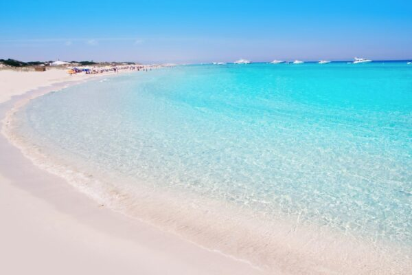 Most Spectacular Pink Beaches in The World - Platja d'Illetes The Most Secluded Beach in Europe