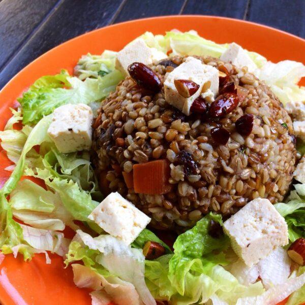 Best Vegan & Vegetarian Restaurants in Rio de Janeiro - Vegetariano Social Clube A 100% Vegan Restaurant