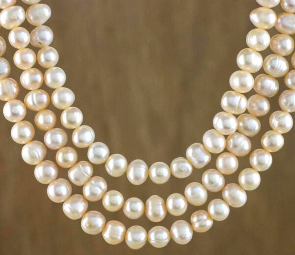 Best Thailand Souvenirs to Buy in Bangkok - Pearls Can Buy From Jewelry Stores