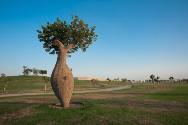 Best Qatar Tourist Places - Aspire Park is Located near Villaggio and Hyatt Shopping Malls
