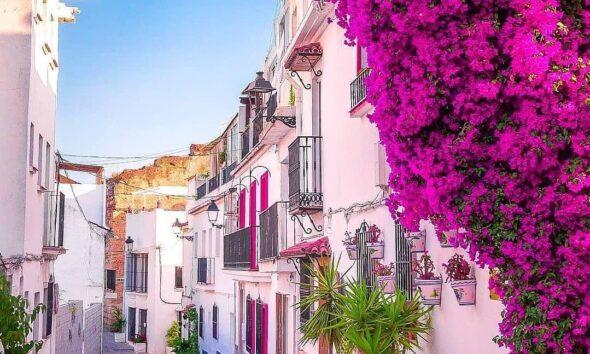 Malaga Restaurants Guide