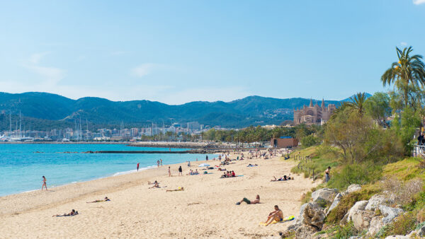 Best Beaches in Mallorca - Can Pere Antoni Comes With the Palm Trees of Paseo Marítimo
