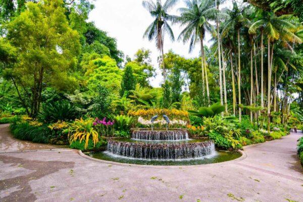 Singapore Tourist Spots - Singapore Botanic Gardens Offers Genuine Plant Life