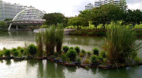 Singapore Tourist Spots - Punggol Water Park is A Suitable Place For Many Recreational Activities
