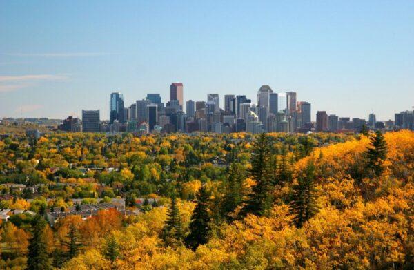 Best Restaurants in Calgary