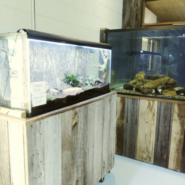 Appalachian Rivers Aquarium Has 4,000 Gallons of Sea And Fresh Water- United States Travel Tips